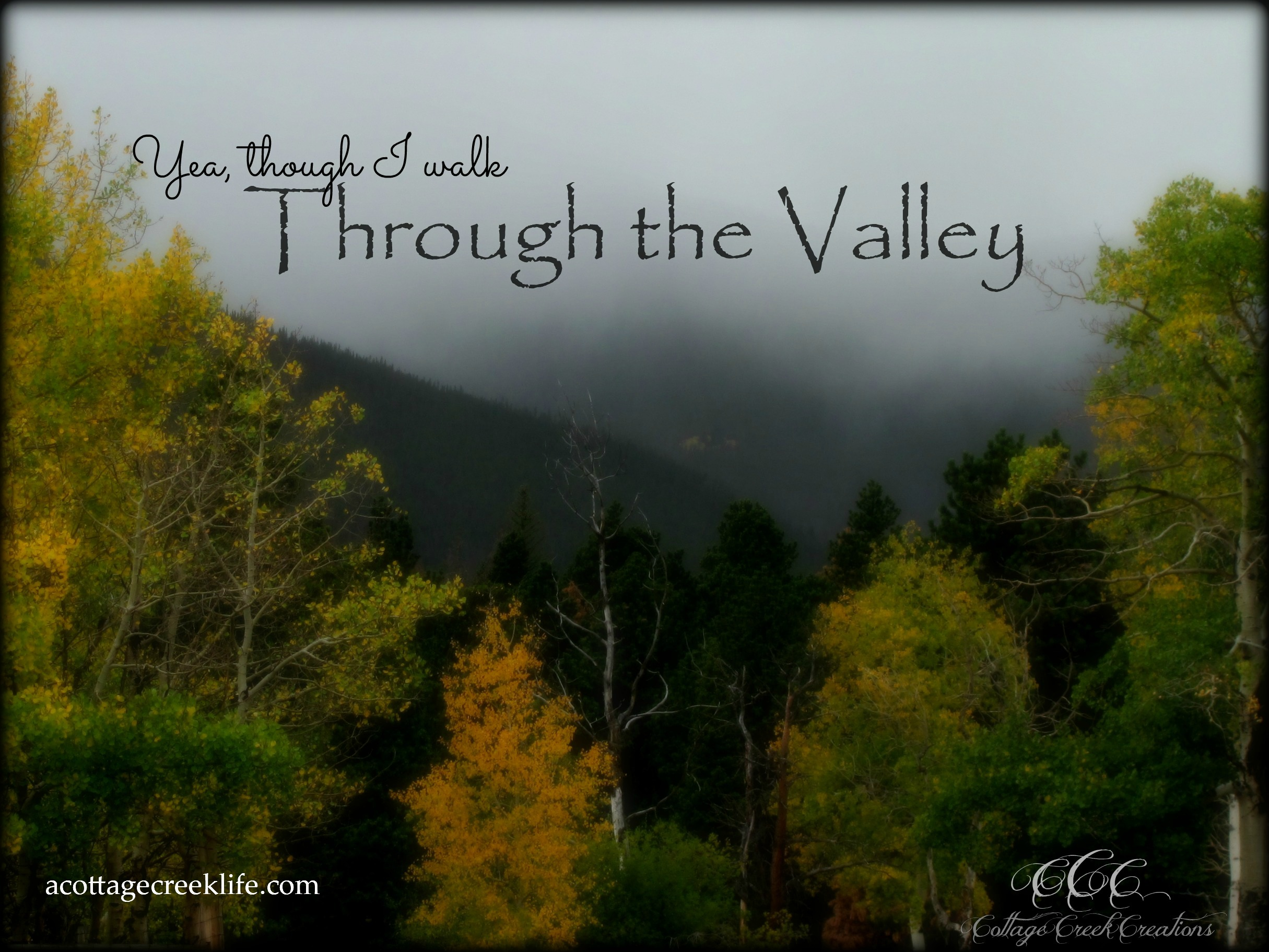 Through the Valley