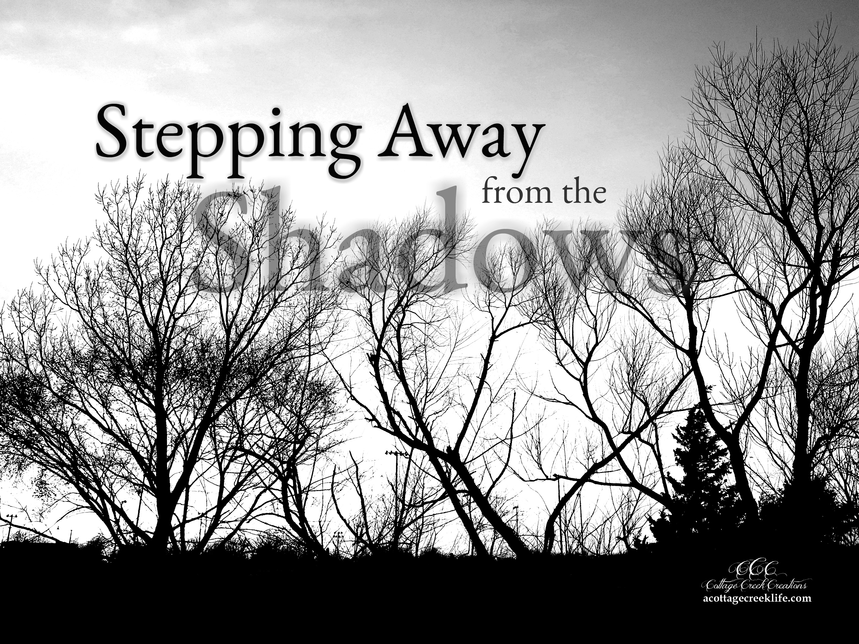 Stepping Away From the Shadows